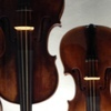 Violin Lessons, Viola Lessons, Cello Lessons, Double Bass Lessons, Music Lessons with Christine Klosterman.