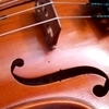 Violin Lessons, Viola Lessons, Piano Lessons, Music Lessons with Michelle Edelman.
