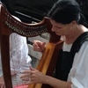 Harp Lessons, Music Lessons with Candace L. Coates.