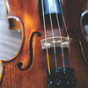 Violin Lessons, Music Lessons with Hannah Gillis.