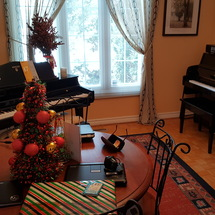 Flute Lessons, Piano Lessons, Music Lessons with KRYSTYNA SLONIEC.